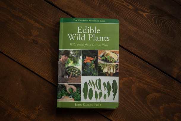 Edible Wild Plants by John Kallas