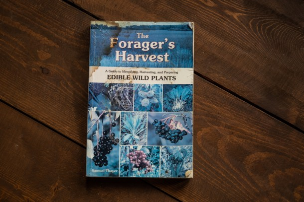The Foragers 'Harvest by Sam Thayer