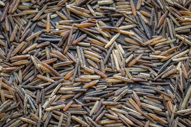 Wood parched hand harvested wild rice