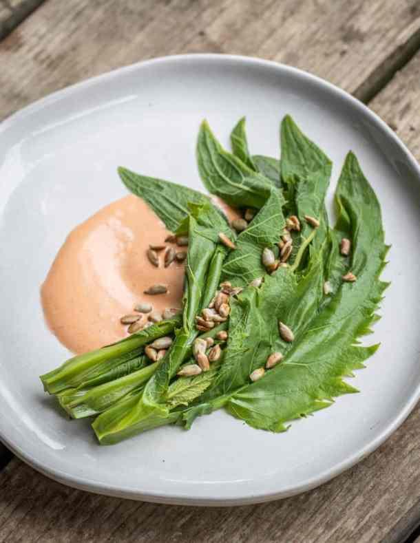 Silphium with harissa sauce and sunflower seeds