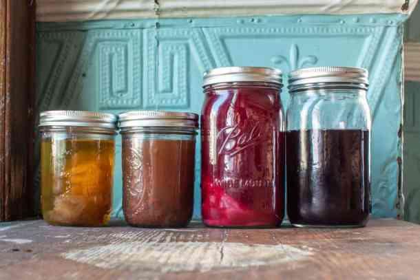 Fermented foraged fruit vinegars
