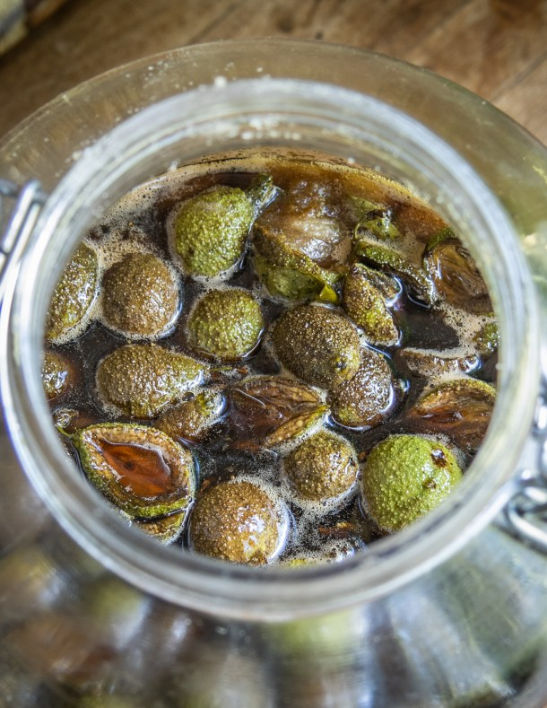 Fermenting green walnut honey
