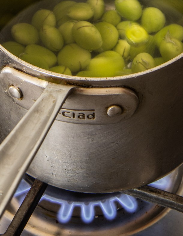 Cooking green Kentucky coffee beans