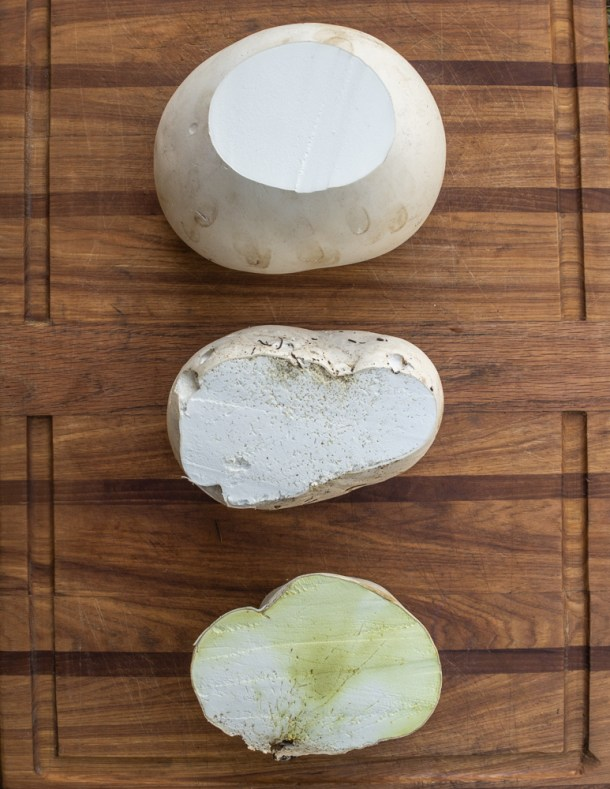 Edible, buggy, and too old giant puffball mushrooms