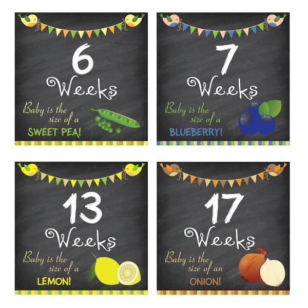 Pregnancy Weeks 6 through 10