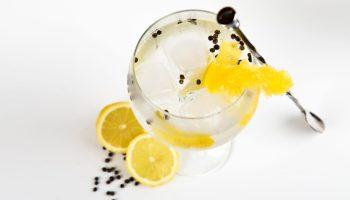 Ginebra copa limón