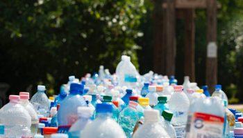 Botellas de plástico. Sostenibilidad. Foto: Mali Maeder (Pexels)