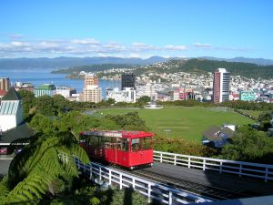 Wellington in Summer - it looked very different in August