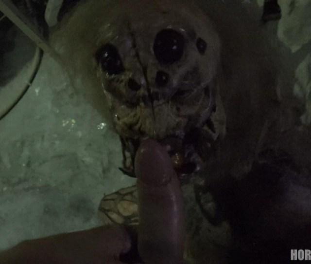 Female Spider Horror Porn 17 Horrorporn Com 1234 Mb