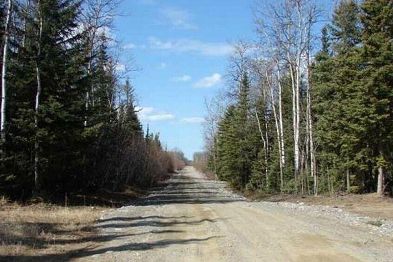 39 acres - homestead - Anderson, Alaska - land for sale 9