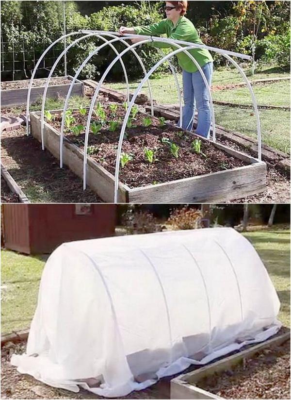 PVC Hoop House Over Garden Bed.