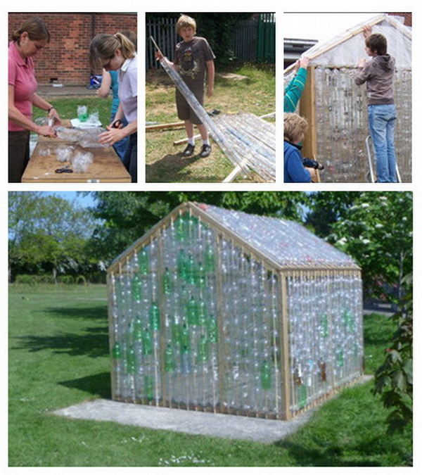 DIY Plastic Bottle Greenhouses.