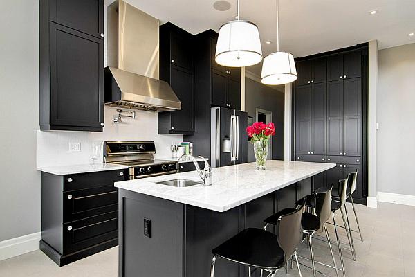 Bold Black Kitchen Cabinet Paint Color Ideas.