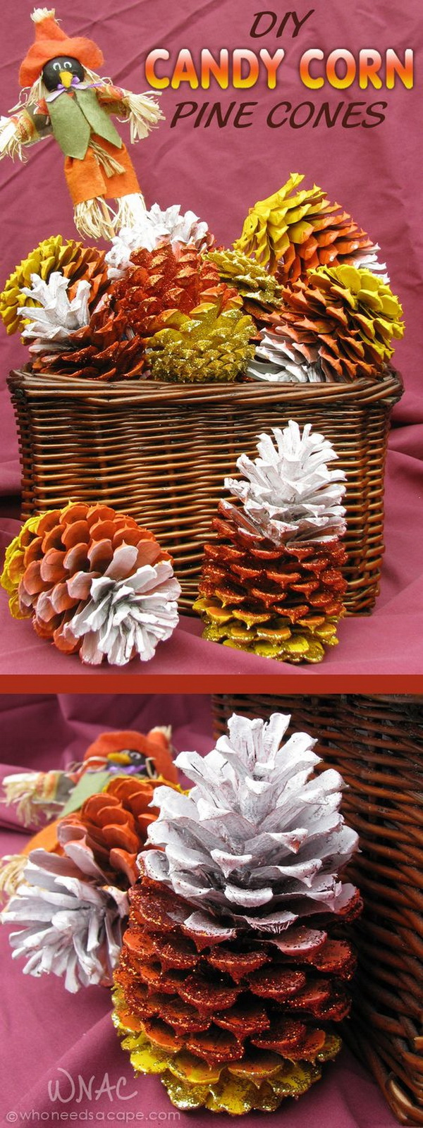 DIY Candy Corn Pine Cones. Transfer the pine cones your pine trees have dropped during the summer into these fun, fast and inexpensive crafts to dress up your porch or home for fall.