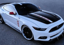 2019 Ford Boss 429 Exterior