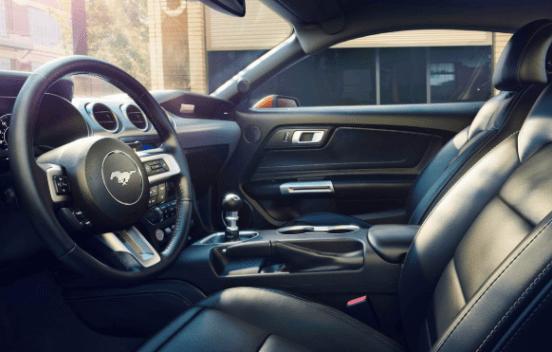 2019 Ford Cobra Interior