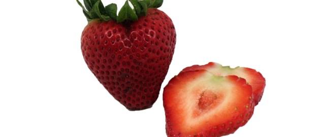 strawberry, squash fields update image