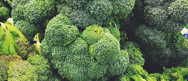 Broccoli – The industry has been hit with substantial drops in yields in these past few week