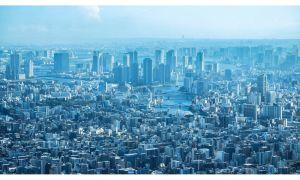 日本の上場企業 業種別の売上と利益の成長率