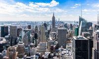 新規上場企業数 年次推移 (日本・アメリカ)
