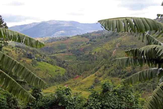 Landscape of Burundi