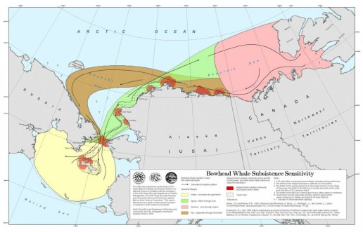 Map of Bowhead Whale Migration