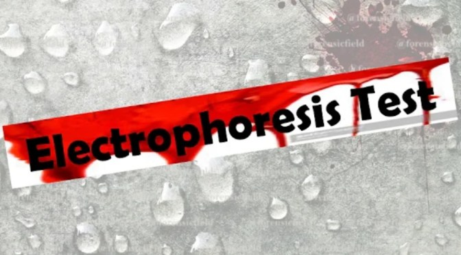 Electrophoresis Test