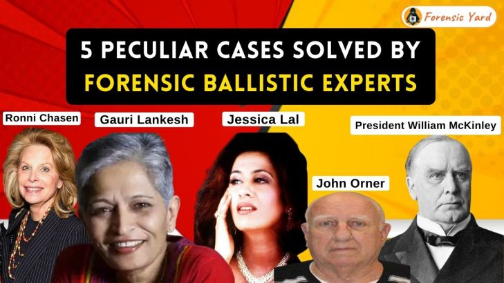 5 Peculiar Cases Solved by Forensic Ballistic Experts Forensic Yard