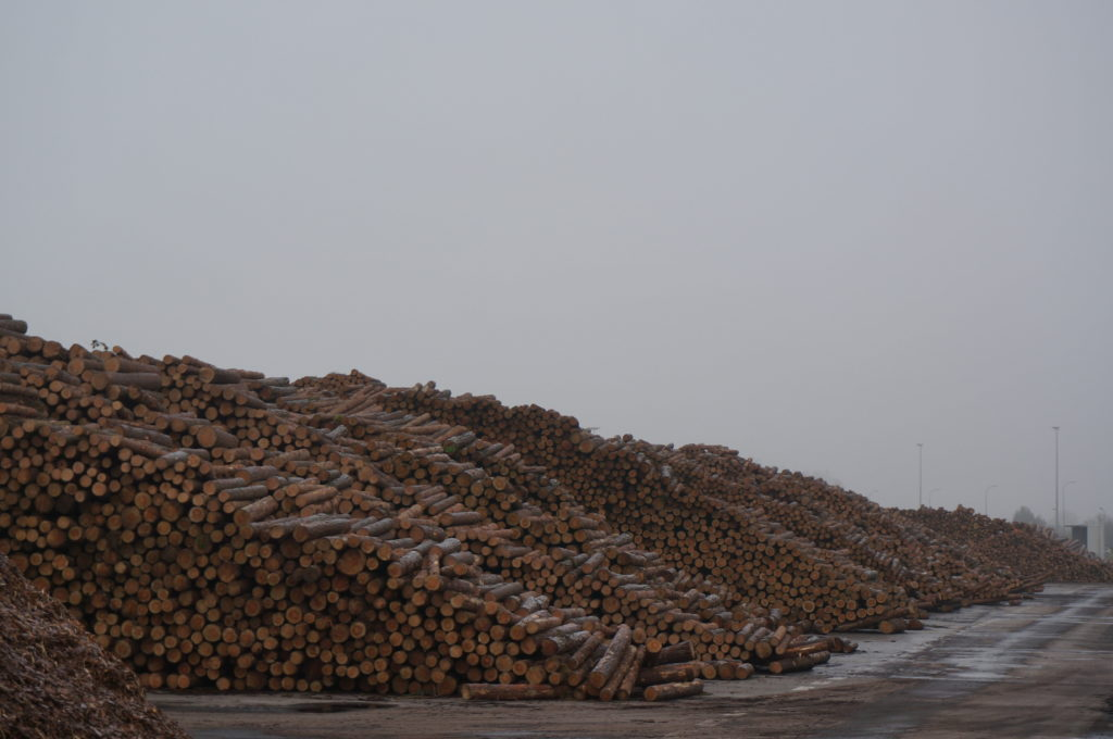 pulp and paper mill yard for pulp logs