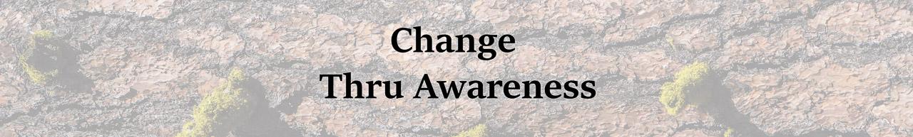 Change Thru Awareness