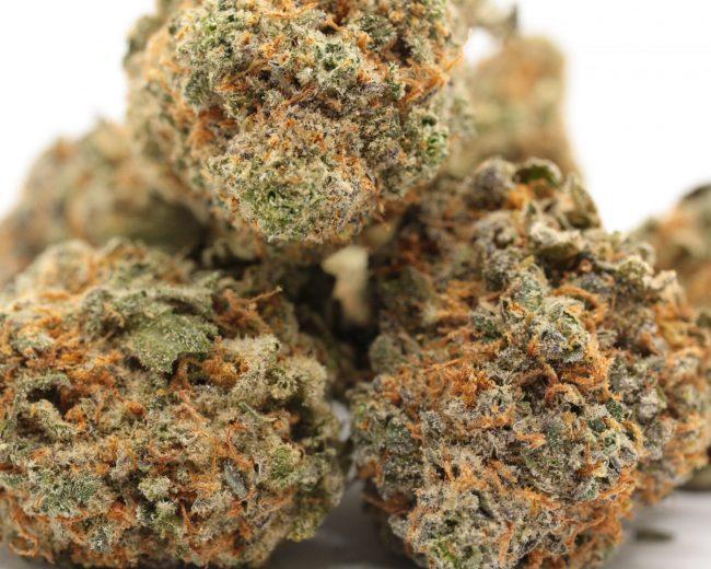 forestcitygreen.com CherryPie