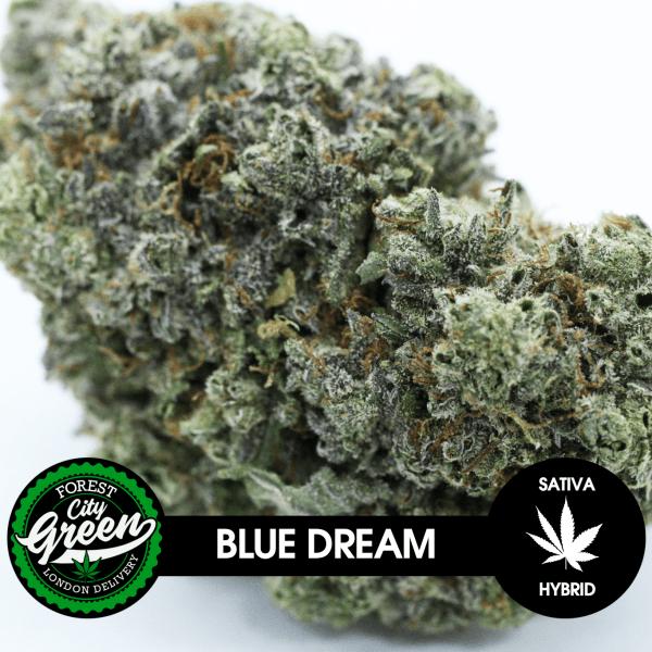 Blue Dream forestcitygreen