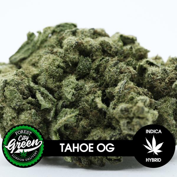 Tahoe OG forestcitygreen