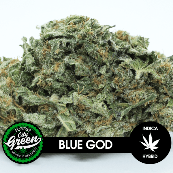 Blue God forestcitygreen