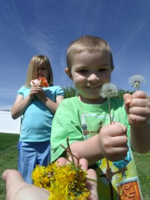 Yvonne's youngest granddaughter and grandson, helping to ensure more pretty yellow flowers grow in our grass.