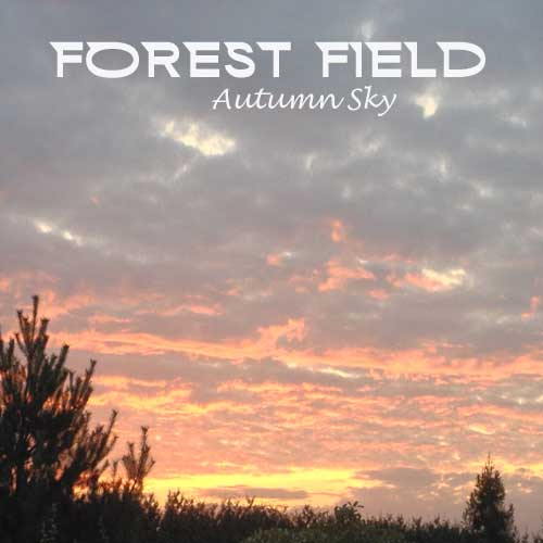 forest field - autumn sky