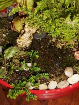 February 1, 2015 moss garden 006