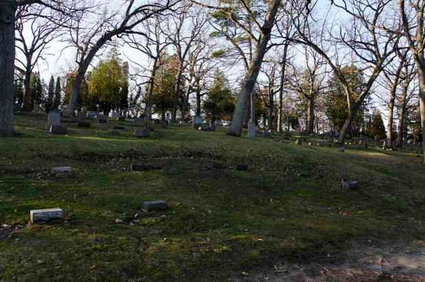 The goose mound at Forest Hill Cemetery. The head of the goose was destroyed by grading for nearby railroad tracks.