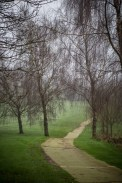 All weather paths
