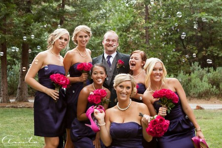 foresthill pictorial bridesmaids and groom