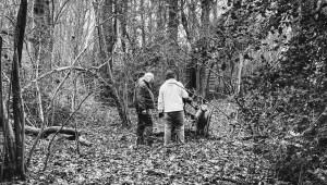 field archery course
