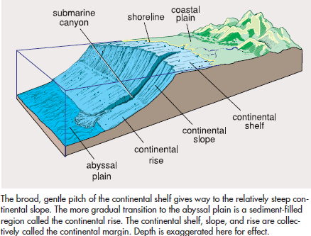Continental Shelf - Lexicon of Forestry - LoF - Forestrypedia