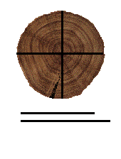 Diameter - Forestrypedia