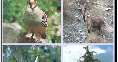 The Importance of Wildlife and the Diversity of Life - Forestrypedia. Wildlife of Pakistan
