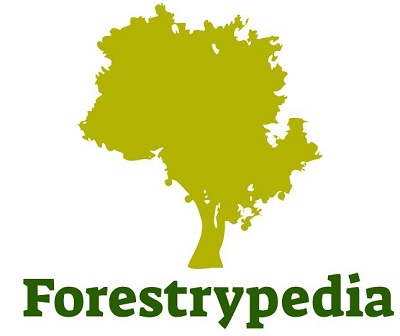 Forestrypedia Important downloads