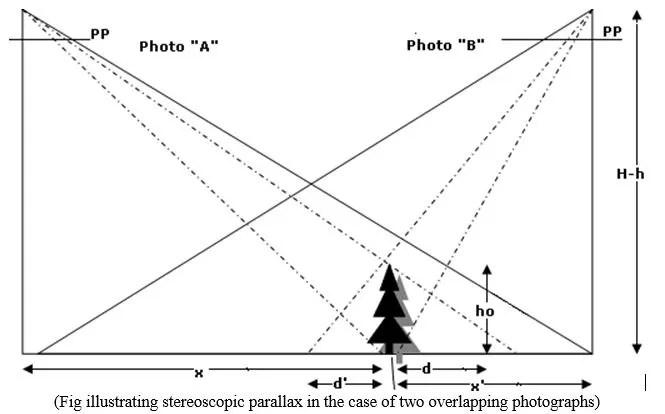 stereoscopic parallax - Forestrypedia