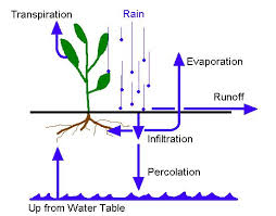 Infiltration and Percolation - Forestrypedia