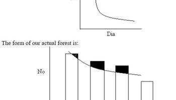 Regulation of Yield - Forestrypedia