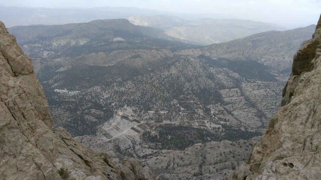 Forests in Balochistan