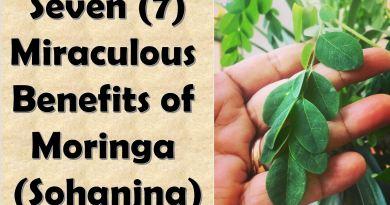 7 Miraculous Benefits of Moringa (Sohanjna)